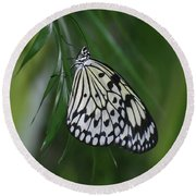 Rice Paper Butterfly Sitting On Green Foliage Round Beach Towel