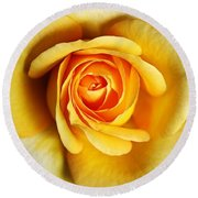 Rich And Dreamy Yellow Rose   Round Beach Towel
