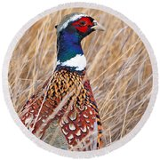 Ring-necked Pheasant  Round Beach Towel