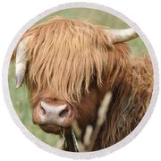 Ringo - Highland Cow Round Beach Towel