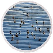 Ripples Of Sand Dotted With Plovers Round Beach Towel