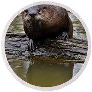 Rive Otter Round Beach Towel