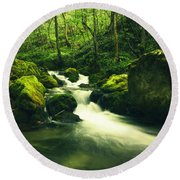 River In A Green Forest Round Beach Towel