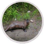River Otter Round Beach Towel