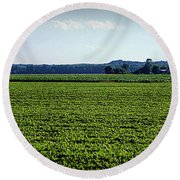Riverbottom Farms Round Beach Towel