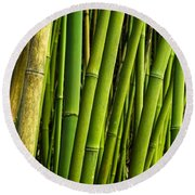 Road To Hana Bamboo Panorama - Maui Hawaii Round Beach Towel