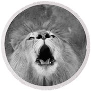 Roar  Black And White Round Beach Towel