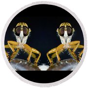 Robber Fly - Alien Visitors Round Beach Towel