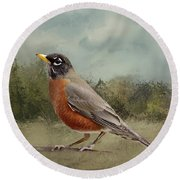 Robin Abstract Background Round Beach Towel