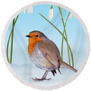 Robin And Cold Snowdrops Round Beach Towel