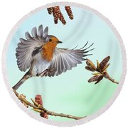 Robin And Poplar Round Beach Towel