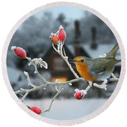 Robin And Rose Hips Round Beach Towel