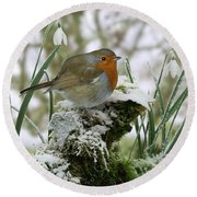 Robin And Snowdrops Round Beach Towel