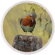 Robin Bird Round Beach Towel