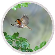 Robin Flying To Nest Round Beach Towel