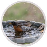 Robin In Bird Bath New Jersey  Round Beach Towel