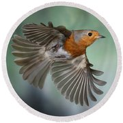 Robin On The Wing Round Beach Towel