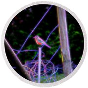 Robin On The Wires Round Beach Towel