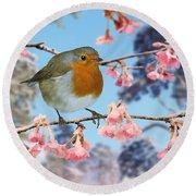 Robin On Winter Flowering Plum Round Beach Towel