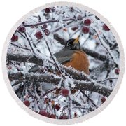 Robin Perched In Crabapple Tree Round Beach Towel