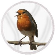 Robin Singing On Branch Round Beach Towel
