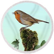 Robin Singing On Ivy-covered Stump Round Beach Towel