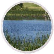 Rochester Wildlife Pond 1 Round Beach Towel