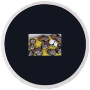 Rock Cats And Fawns Round Beach Towel