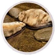 Rocks At Rest Round Beach Towel