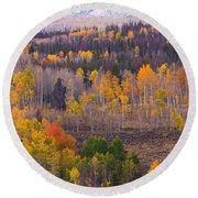 Rocky Mountain Autumn View Round Beach Towel