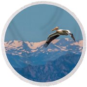 Rocky Mountain Pelican Round Beach Towel