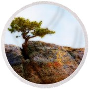 Rocky Mountain Tree Round Beach Towel