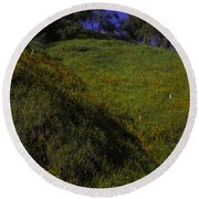Rolling Hills With Poppies Round Beach Towel