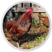 Rooster And Friend Round Beach Towel