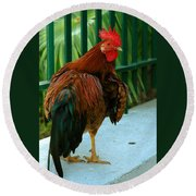 Rooster By The Fence Round Beach Towel