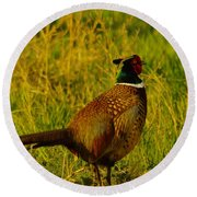 Rooster Pheasant Round Beach Towel