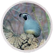 Rooster Quail  Round Beach Towel