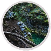 Rooted In Emerald  Round Beach Towel