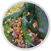 Roots And Leaves Round Beach Towel