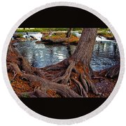 Roots On The River Round Beach Towel