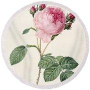 Rosa Centifolia Round Beach Towel