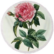 Rosa Gallica Regalis Round Beach Towel