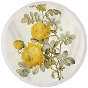 Rosa Sulfurea Round Beach Towel by Pierre Redoute
