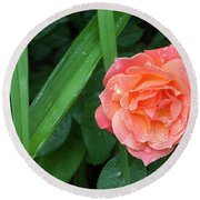Rose And Day Lily Lives Round Beach Towel