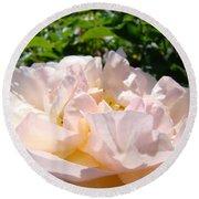 Rose Art Prints Canvas Sunlit Pink Rose Garden Baslee Troutman Round Beach Towel