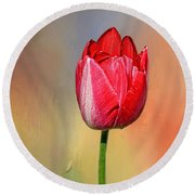 Red Tulip At Sunset By Kaye Menner Round Beach Towel