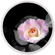 Rose Emergance Round Beach Towel