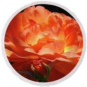 Rose Flower Art Prints Oragne Roses Summer Botanical Baslee Troutman Round Beach Towel