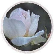 Rose Flower Series 14 Round Beach Towel