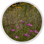 Rose Gentian With Brown Eyed Susans Round Beach Towel